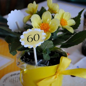 My Parties: It's Great to Bee 60 Surprise Birthday Party