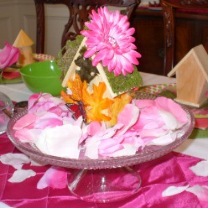My Parties: Flower Fairy Party