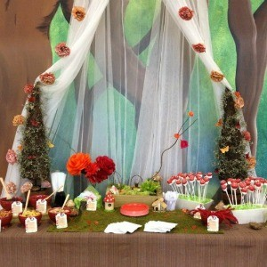 Guest Party: Woodland Fairy & Gnomes 7th Birthday