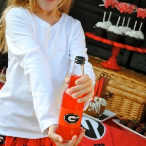 My Parties: Tailgating, Georgia Bulldog Style