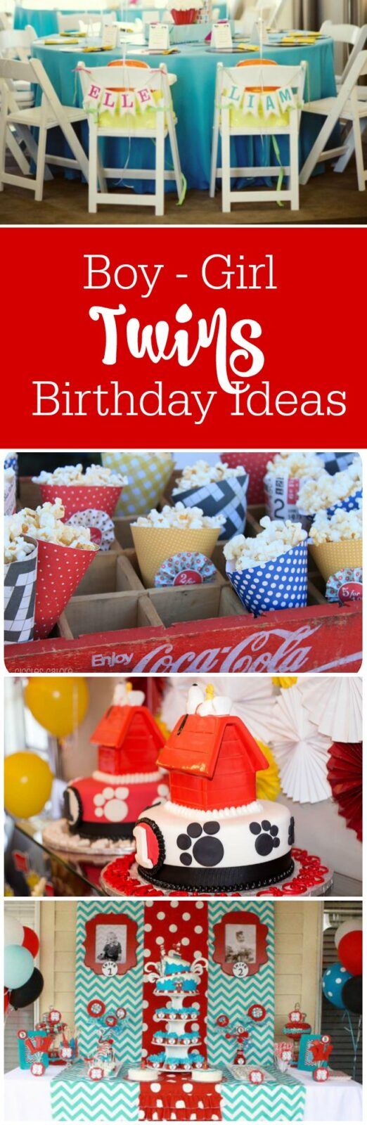 Twins: Birthday Party Ideas for Boy Girl Twins