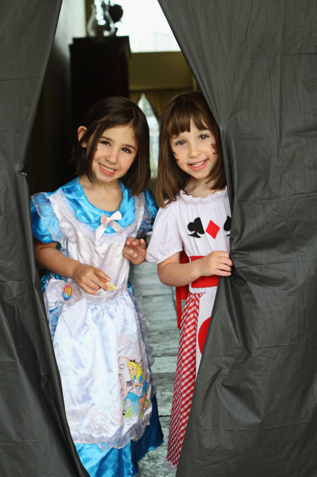 Guest Party Alice In Wonderland Birthday Party For Twins