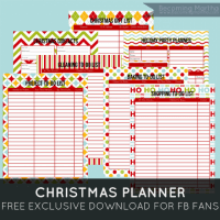 FFs Christmas Planner PinLaVie