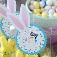 FFs No Biggie Easter