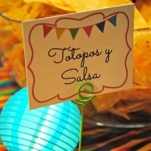 My Parties: First Birthday Fiesta