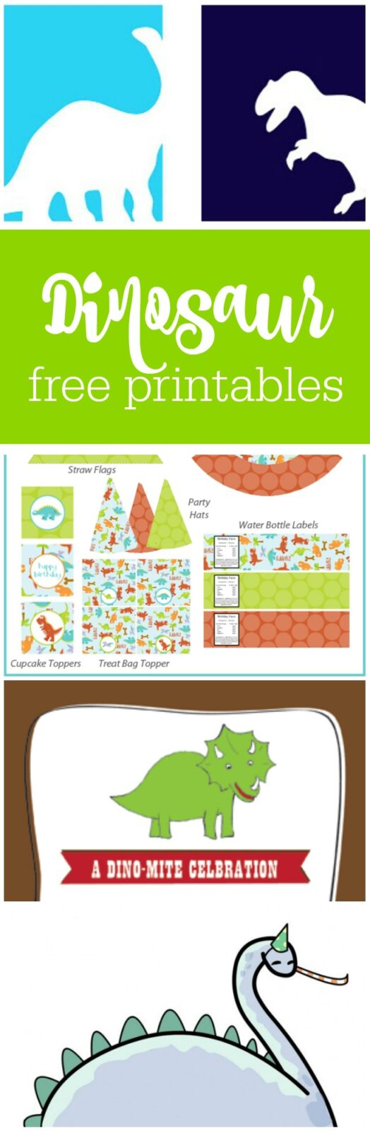 Free dinosaur party printables curated by The Party Teacher