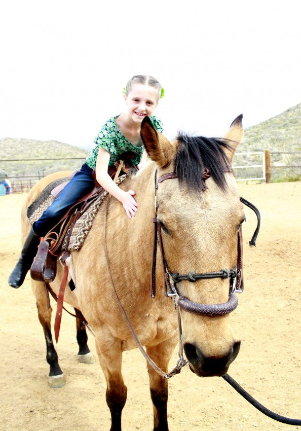 Country Fair Birthday Party by The Crafty Woman featured on The Party Teacher - horseback riding