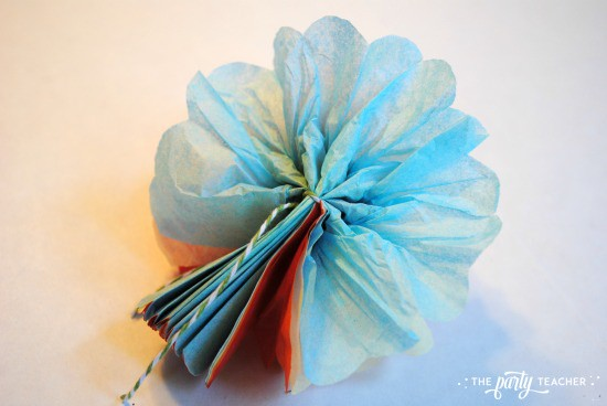 Mexican Tissue Flower Tutorial by The Party Teacher - 9