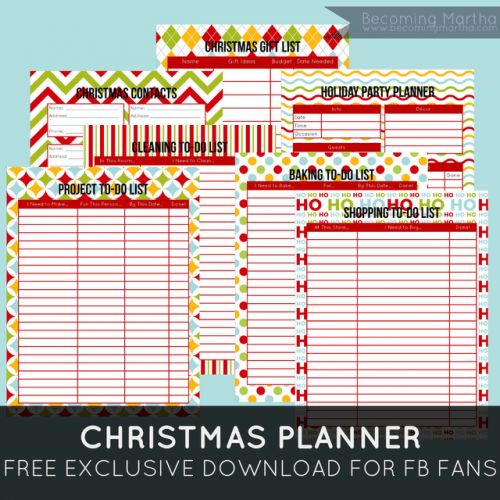 FF Christmas Planner PinLaVie