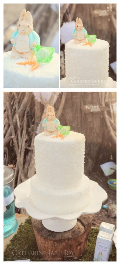 Peter Rabbit Cake by Catherine Jane Joy C