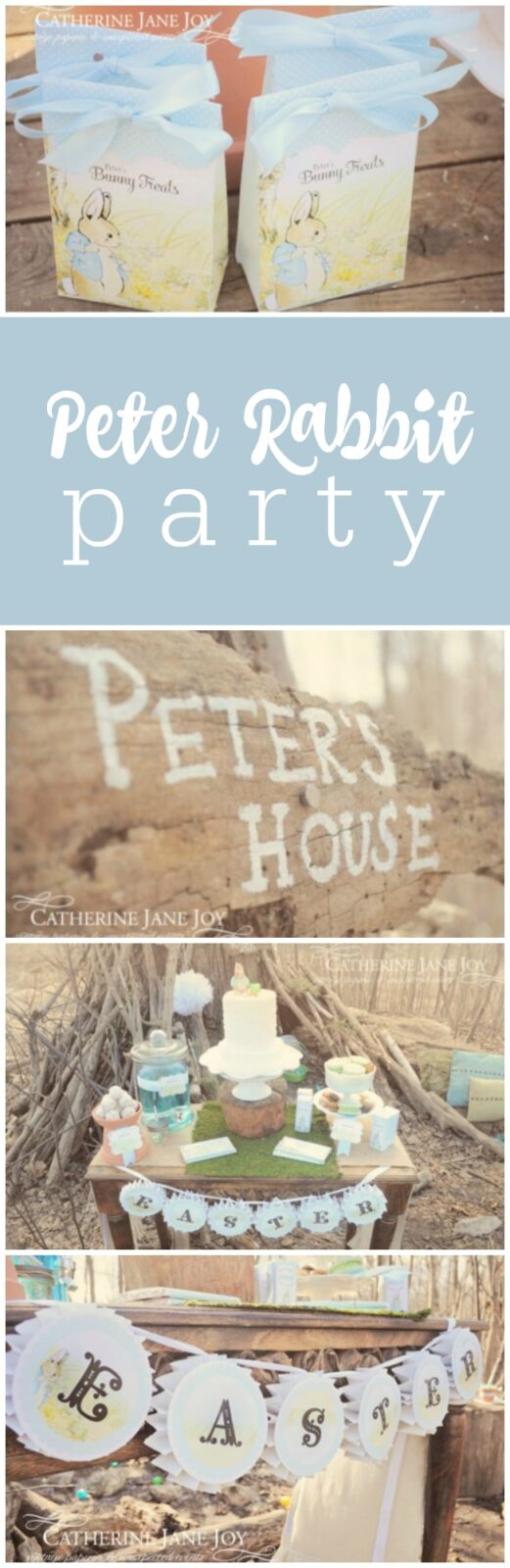 Peter Rabbit Easter Bunch by Catherine Jane Joy featured on The Party Teacher