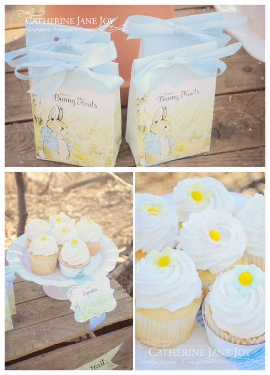 Peter Rabbit Favors Cupcakes by Catherine Jane Joy C