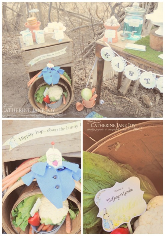 Peter Rabbit McGregor's Garden by Catherine Jane Joy C