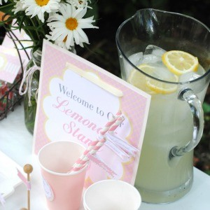 Guest Party: Pink Lemonade Play Date Party
