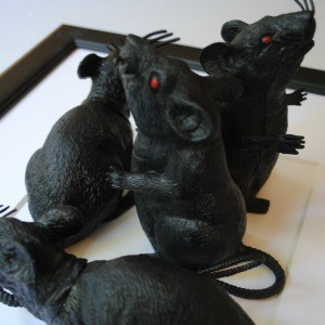 Tutorial: 3-D Black Rat Halloween Art