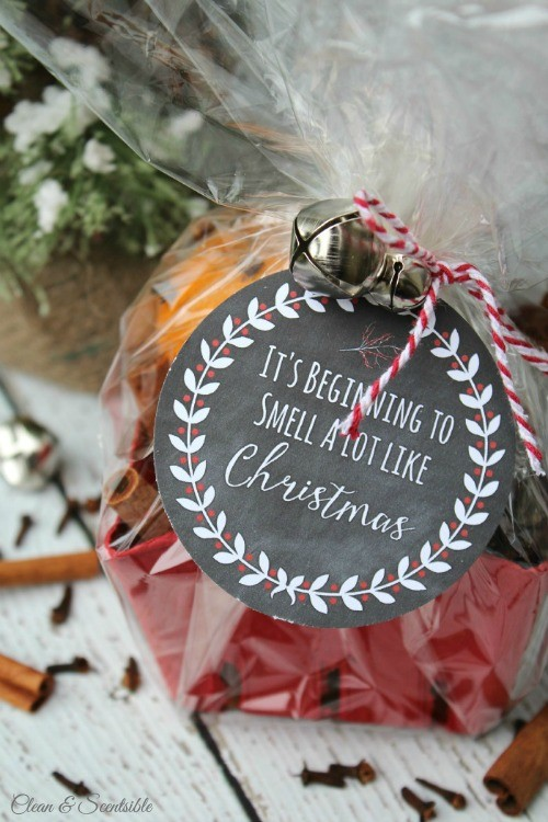 FF Clean and Scentsible Christmas Tags