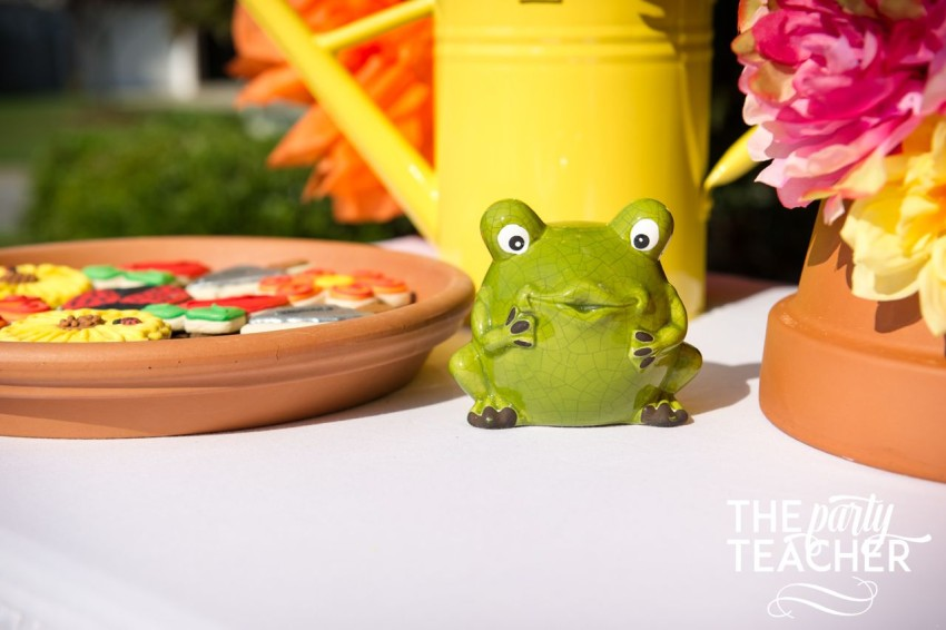 Gardening Party by The Party Teacher - frog on dessert table