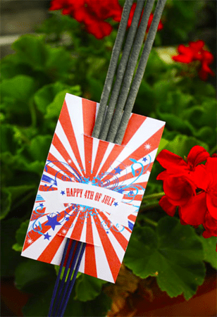 4th of July free sparkler holders by Skip to My Lou