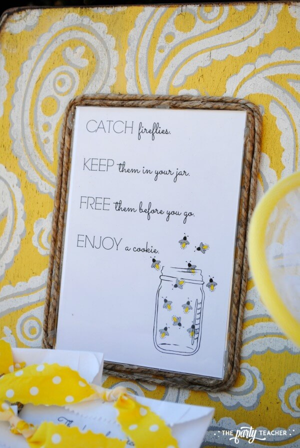 How to throw a Firefly Catching Party by The Party Teacher - party instructions framed