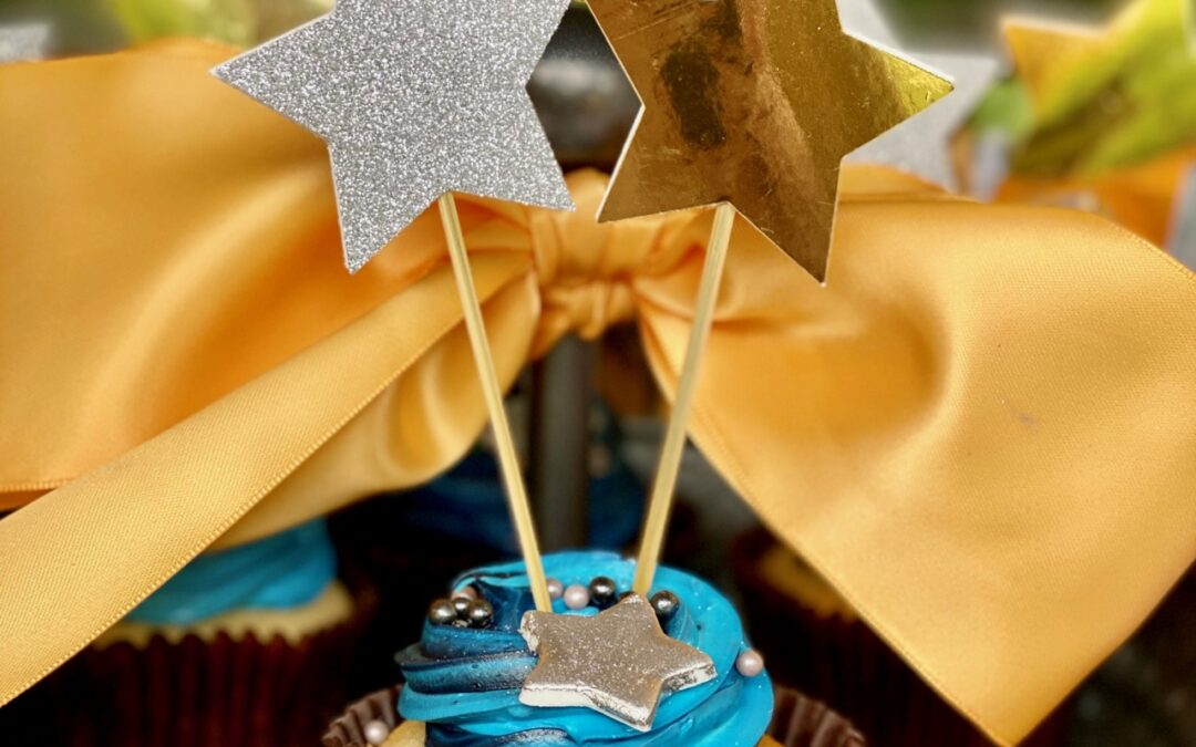 My Parties: Under the Stars Sweet 16 (Surprise Party for Twins!)